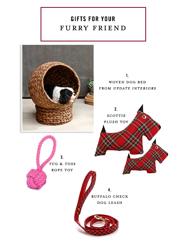 SKIRT-PR_GIFT-GUIDE_FURRY-FRIEND